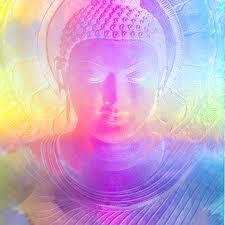 Not Your Guru